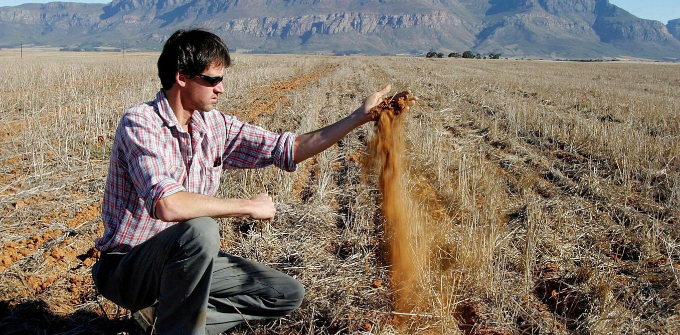 South Africa's struggling agriculture sector