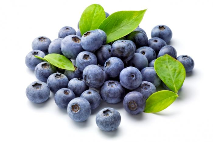 Blueberry extract may help fight gum disease