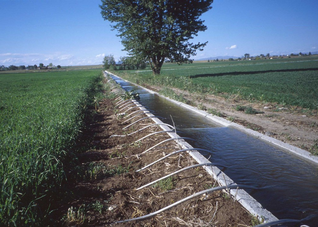 Consider water harvesting,irrigation to attain food security