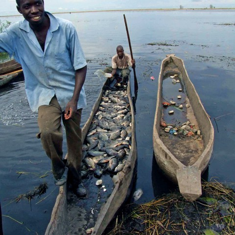Zambia Grappling with 70% Fish Deficit