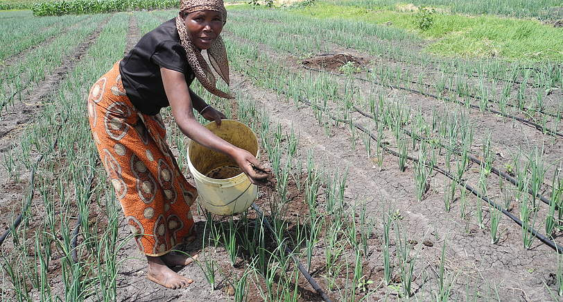 Tanzania farmers adopts vegetable farming to improve nutrition