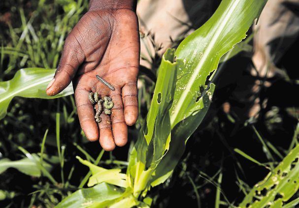 Integrated Pest Control for farmers