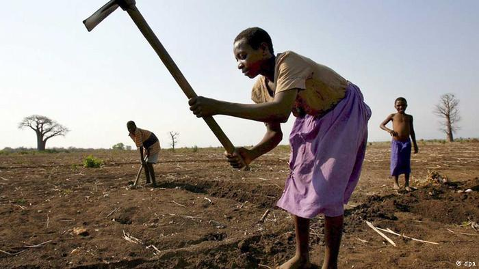 Climate change threaten Zimbabwe's food security