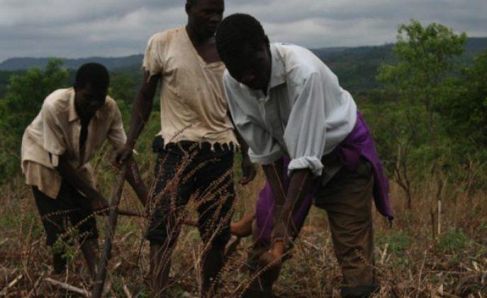 NAMPO / Nation in Conversation: UN decade of family farming