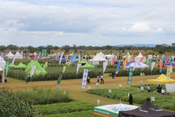 Polish Pavilion at Farm-Tech Expo Kenya to show how agri sector in Poland evolved and transformed
