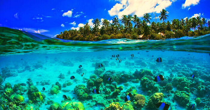 Seychelles launches world's first blue bond to fund marine projects