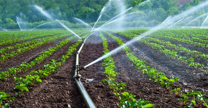 Uganda government to construct over 70,000 irrigation schemes to improve agricultural production