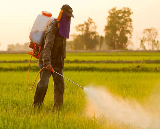 Agrochemicals Market at a compound annual growth rate (CAGR) of 4.5%, from 2016 to 2021