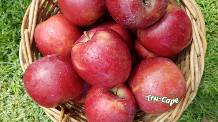 Apples and pears are nature's own anti-rust