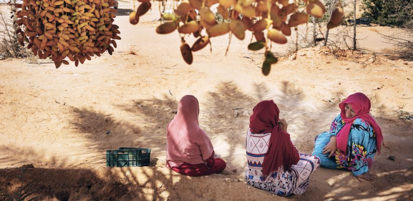 IFAD and Tunisia invest in improving the livelihoods of poor rural families