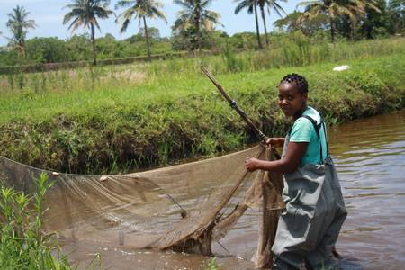 IFAD to provide US$43 million to boost aquaculture in Mozambique