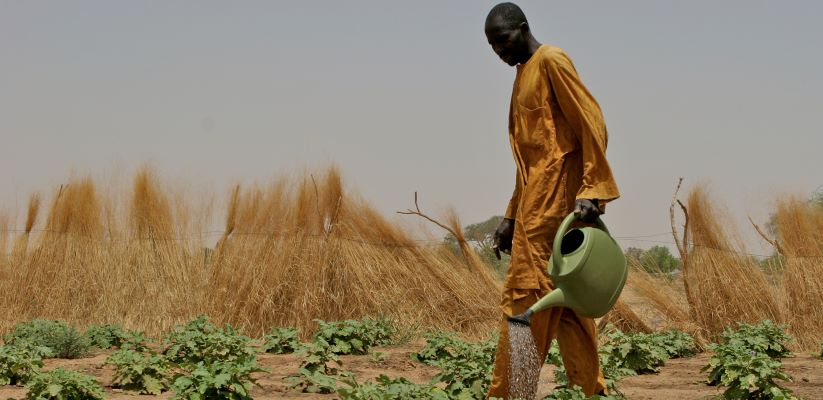 IFAD President calls on Member States to increase investment in rural development to eradicate extreme poverty and hunger