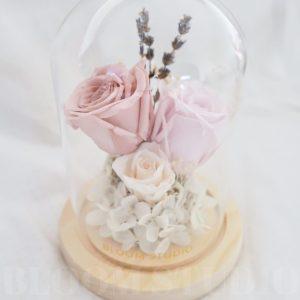 Preserved Flower Dome Cherie 1