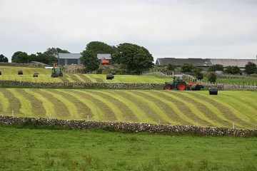 agricultores irlandeses