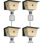 Best-Bee-Brothers-Carpenter-Bee-Trap-4-pack-0