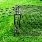 Humane-Trap-Live-Animal-Coyote-Stray-Cat-Fox-Raccoon-Trap-50x24x19-0-1