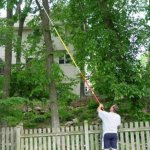 Kissemoji-19-FOOT-POLE-SAW-Tree-Pole-Pruner-Tree-Saw-0