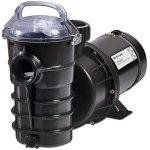Pentair-Dynamo-AG-Pool-Pump-1-HP-wCord-Switch-340197-0