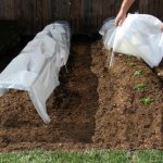 TunLcover-Row-Cover-and-Plant-Protector-0
