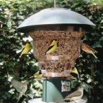 Wild-Bills-8-Station-Squirrel-Proof-Bird-Feeder-0-1