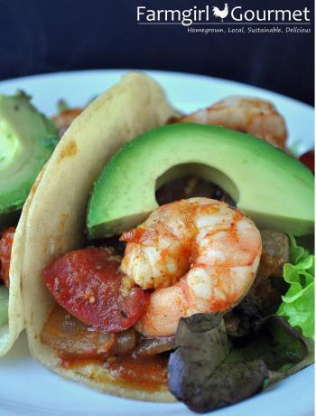 Mexican Shrimp Tomato and Chili Wraps
