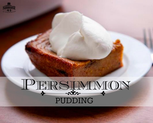 persimmon pudding recipe
