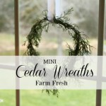 MINI CEDAR WREATH