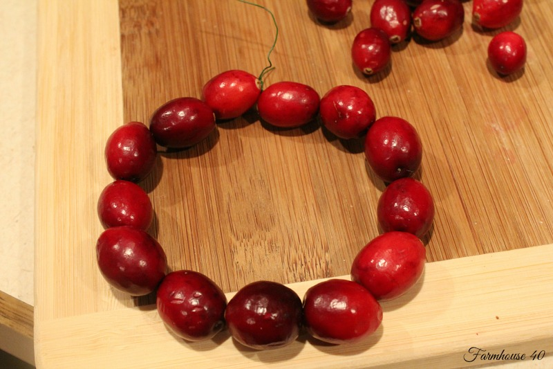 cranberry wreath 3486