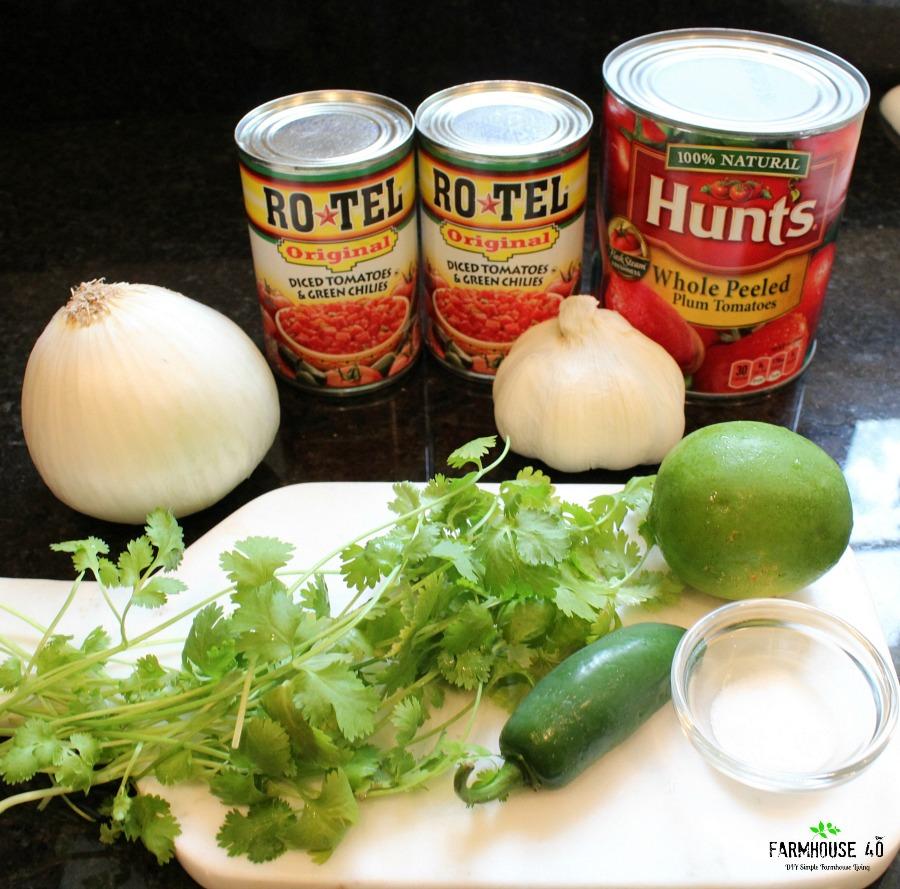 salsa recipe 1 jpg