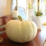 Simple Fall Decor That You Can Do This Weekend!