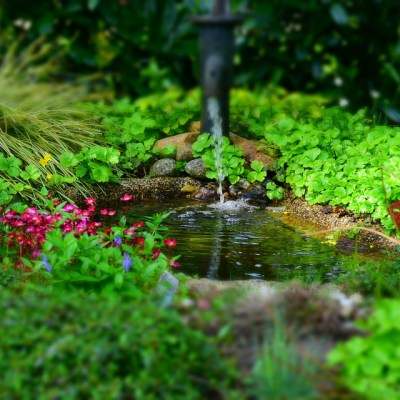 It's Time To Make Your Garden More Usable This Summer