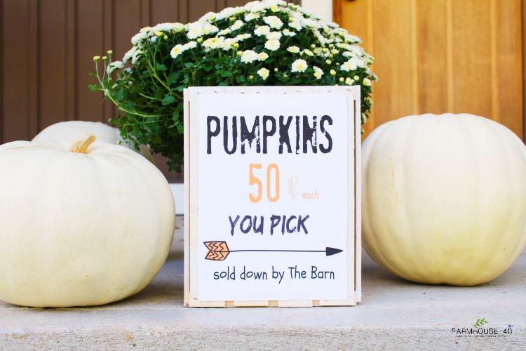 pumpkin-crate-sign-printable