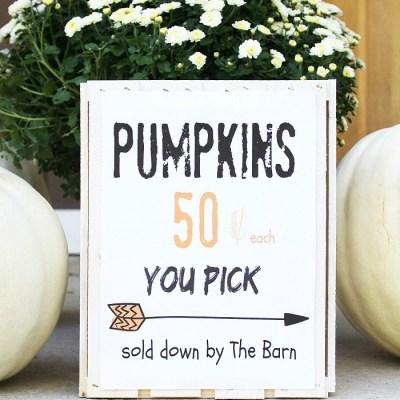 DIY Pumpkin Sign Printable
