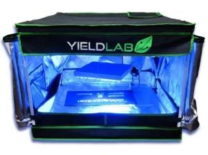 Yield Lab 32x32x24 Reflective Grow Tent