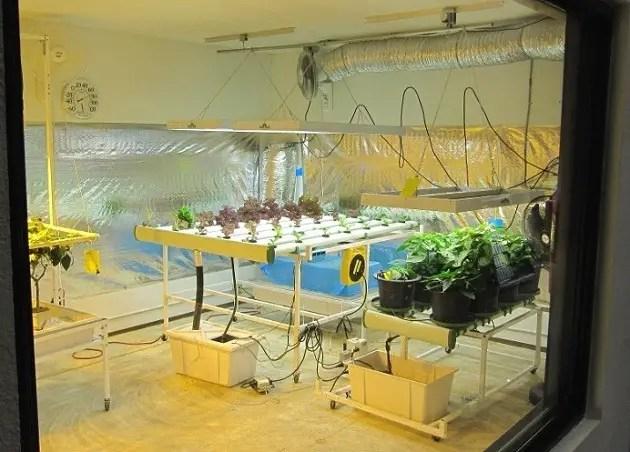 Used Hydroponic Grow Box