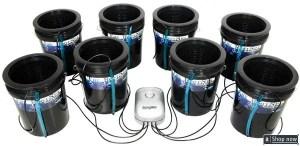Deep Water Culture (DWC) Hydroponic Bucket Kit 5 Gallon