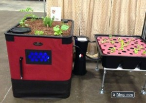 Aquaponics Grow Bed System Complete Kit