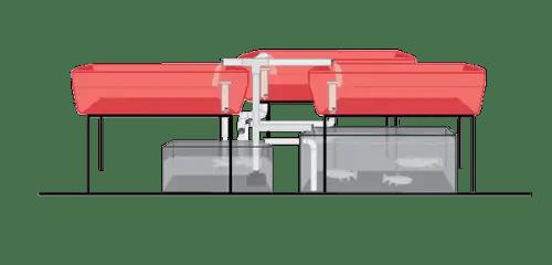 Aquaponic IBC growing system