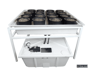 Complete Ebb and Flow Hydroponics System
