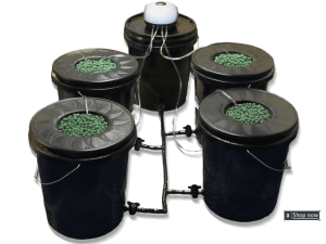 Deep Water Culture (DWC) Bubbler System Hydroponic Supplies