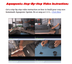 Aquaponics System Setup Video Instructions
