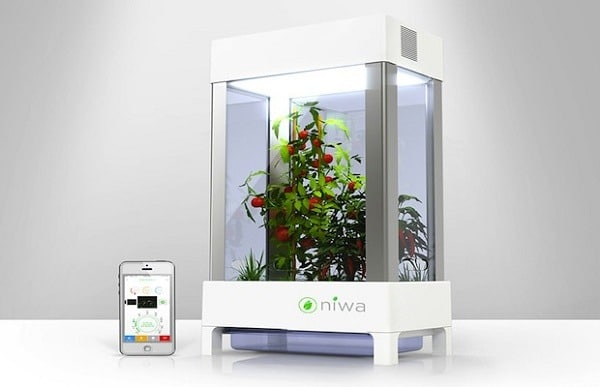 Smartphone Powered Hydroponic Garden