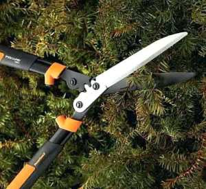hedge shears lowes