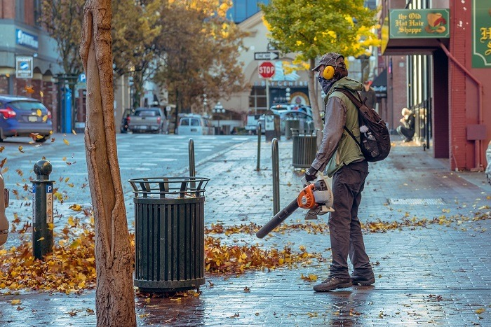 Choosing The Right Leaf Blower For Your Yard