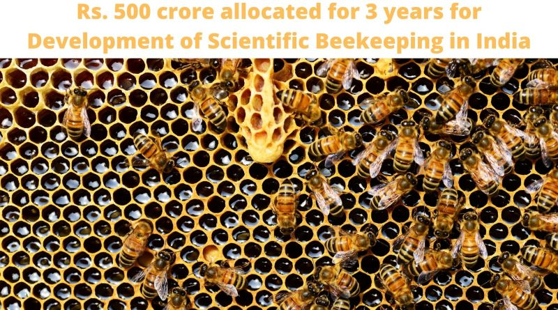 Rs. 500 crore allocated for 3 years for Development of Scientific Beekeeping in India