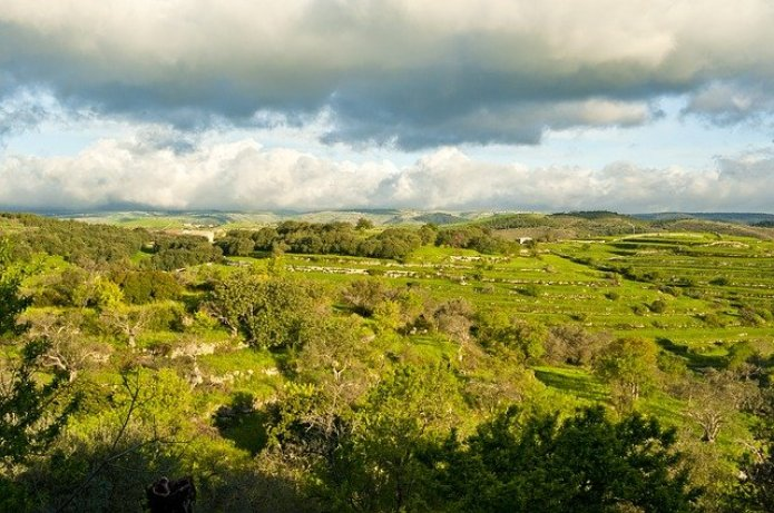 View of Sicilian countryside
