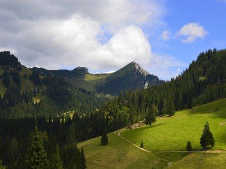 FARMSTAYS-agritourism-TYROL-AUSTRIAN-ALPS