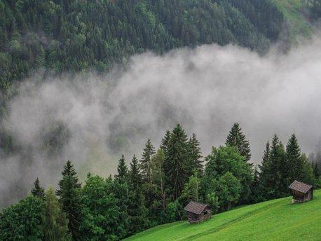 CARINTHIA FARMSTAYS in Austria