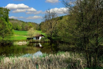FARMSTAY in thuringia-germany-