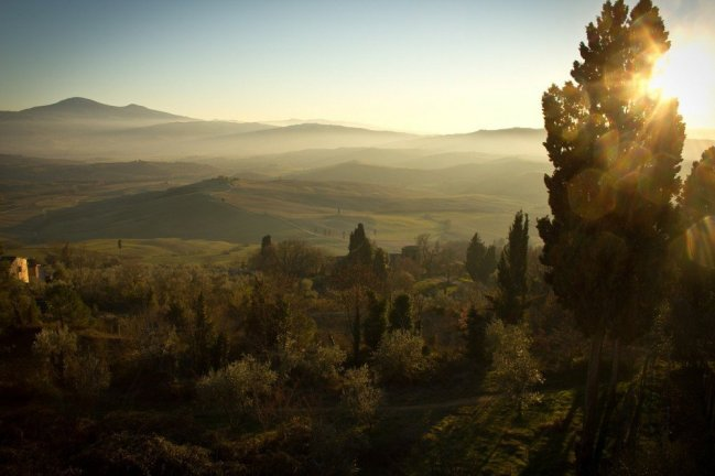 Farmstay in Tuscany, Italy with vineyards and olive farm